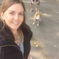 Roxy's dog boarding