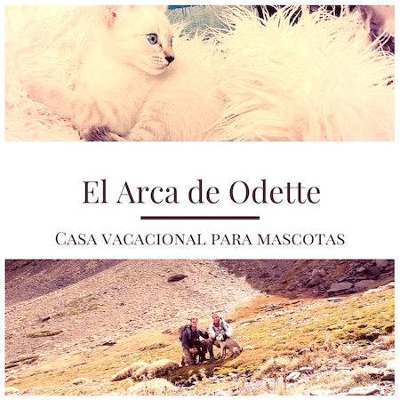 Odette S.
