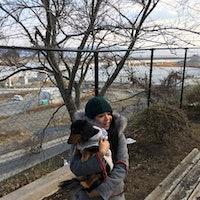 Shiho's dog boarding