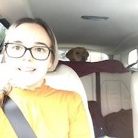 Jade's dog boarding