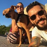 Daniel y Ana's dog boarding