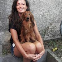 Silvia's dog boarding