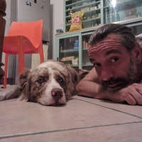 Francesco's dog boarding