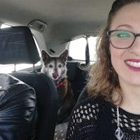 Nunzia's dog boarding