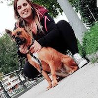 Alba's dog boarding