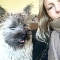 Emma's dog boarding