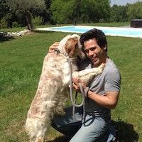 Ari's dog boarding