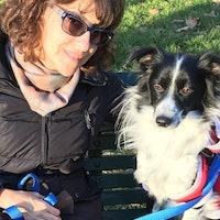 Maggie's dog boarding